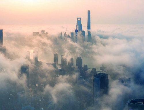 Lotta contro l'inquinamento con metodi biologici